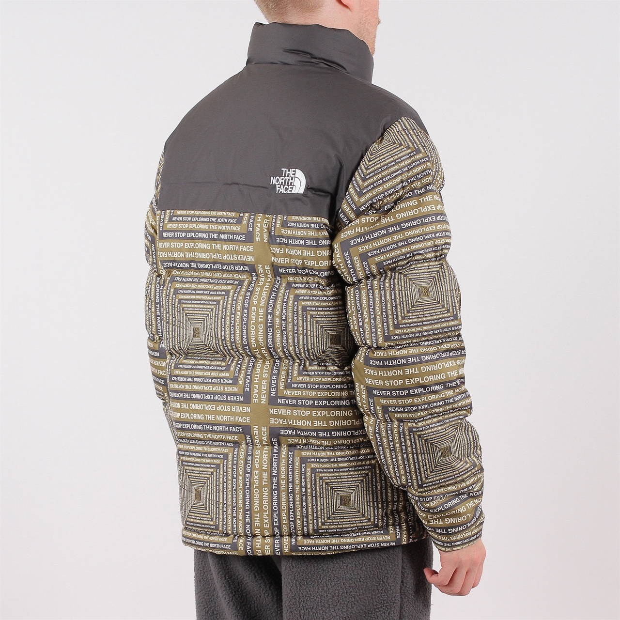 70bee4926c Shelta - The North Face 1992 Nuptse Jacket Print (T92ZWE5XN)
